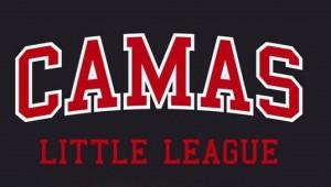 CLL logo 2013