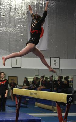 gymnastics1