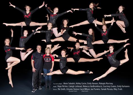 gymnastics2015